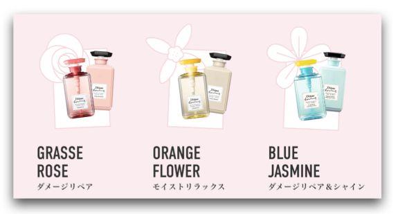 日本洗髮精 Diane Bonheur