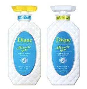 Diane Miracle You_2
